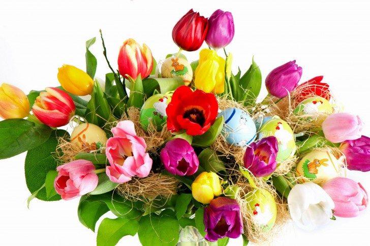 Ramo de tulipanes de colores :: Imágenes y fotos
